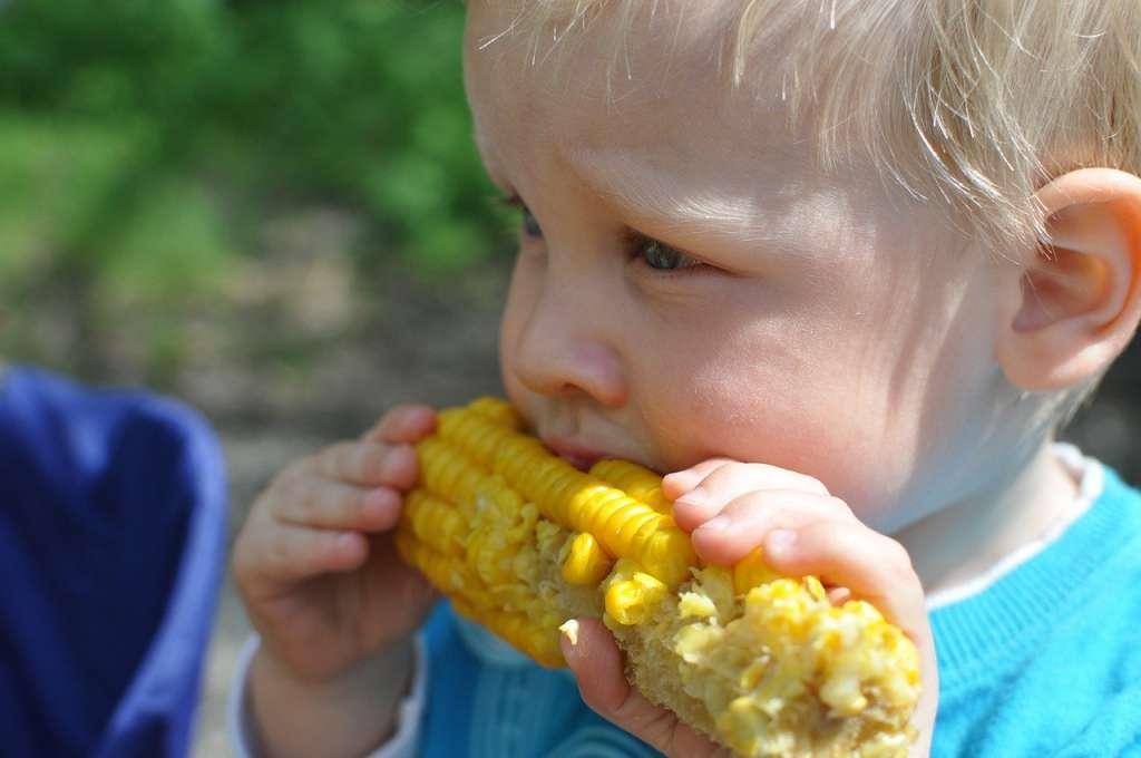 Jak przemycić warzywa do diety dziecka